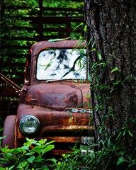 Old red truck behind a tree