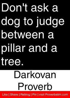 Don't ask a dog to judge between a pillar and a tree. - Darkovan Proverb #proverbs #quotes
