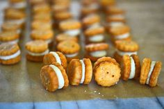 How to Make (Gluten-Free) Ritz Bits Crackers at Home: http://f52.co/1av7bZB #Food52.