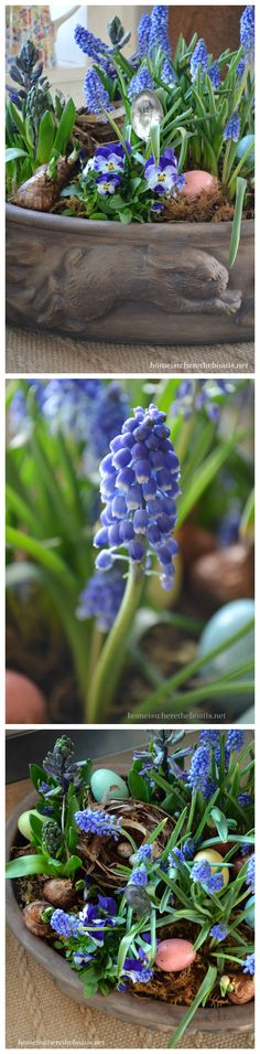 Bunny Planter with purple hyacinths, muscari, violas, a bird nest, colored eggs, bird nest and stamped spoon marker | homeiswheretheboatis.net #Easter #spring #garden