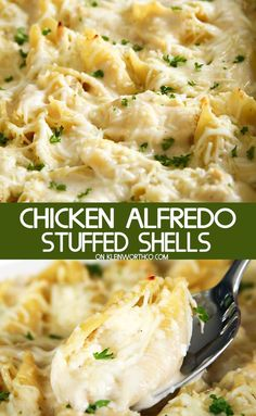 Chicken Alfredo Stuffed Shells is an easy dinner recipe made with rotisserie chicken, 3 cheeses & alfredo sauce. Simple & quick to make, it's a favorite. #stuffedshells #alfredo #chicken #chickendinner #pastadinner #chickenalfredostuffedshells #cheese #easydinner #parmesan #pasta #easyfamilyrecipes #easyrecipes