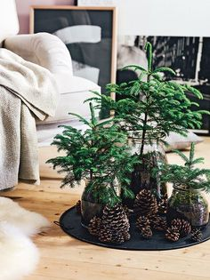 Mach's dir hygge – Gartenzauber - Garden DecorsSinterklaas is het land uit en dat betekent maar één ding: Kerst staat weer v…. Sinterklaas is out of the country and that only means one thing: Christmas is again …Mach's dir hygge – Tammy Hygge Christmas, Noel Christmas, Modern Christmas, Simple Christmas, Christmas Crafts, Natural Christmas, Scandinavian Christmas, Contemporary Christmas Trees, Christmas Dinners