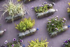 Vertikalni vrtovi – idealni za gradsko okruženje - BUDI.IN