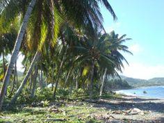 Orange Bay