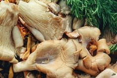 5 Ingredients You Should Be Adding to Your Bone Broth with RECIPE