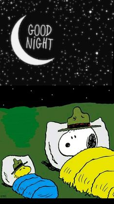 Cute Good Night, Good Night Gif, Good Night Image, Good Night Greetings, Good Night Wishes, Good Night Friends Images, Goodnight Snoopy, Snoopy Comics, Snoopy Cartoon