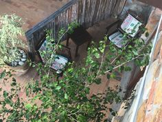 Each suite has its own outside seating area Outside Seating Area, The Outsiders, Plants, Plant, Planets
