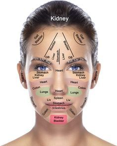Face & Organ Map   Everything in your body is intricately connected!