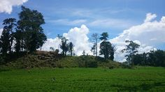 peanuts land.... top of mount tampusu... tondano...north sulawesi indonesia