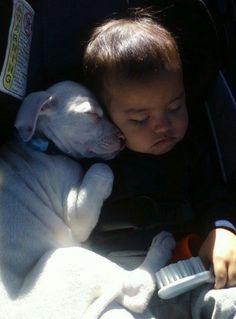 Baby & Puppy Sleeping Next to Each other