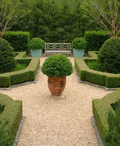 Really love this shape and overall look. Not gravel, something more solid. Very simple. Want to be able to move bench and place a 6' table at each end for bar, etc. Boxwood parterre by Howard Design Studio