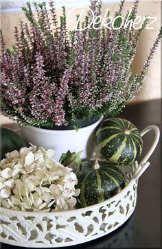 More beautiful living: extraordinary tips for an autumn decoration – Famous Last Words Seasonal Decor, Fall Decor, Manualidades Halloween, Deco Nature, Most Beautiful Gardens, Deco Floral, Autumn Crafts, Décor Boho, Winter Garden