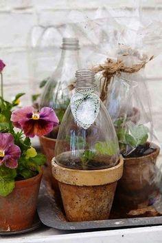 Zdjęcie numer 16 w galerii - Plastikowe butelki. 24 pomysły jak wykorzystać butelki w ogrodzie