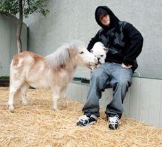 miniature horse quotes   Rob & Big Season 2 Episode 1 - Meaty & Mini   Rob & Big 2x1