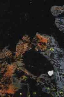 Something happens at night 900 by artisttawfik60.deviantart.com on @deviantART