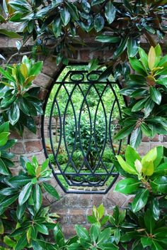 Wrought iron garden window, Charleston  // Great Gardens & Ideas //