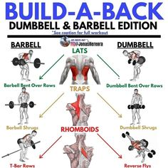 T Bar Row, Spartacus Workout, Strong Back, Bent Over Rows, Back Day, Back Exercises, Your Back, Gym Girls, Gym Rat