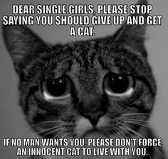 To all the crazy single ladies...