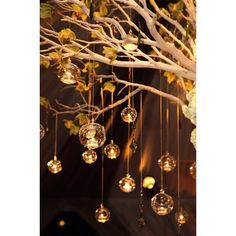 6 Pieces 5 Hanging Bubble Candle Holders Orb Candle Holders ($25) ❤ liked on Polyvore featuring home, home decor, candles & candleholders, brown, decorations, weddings, flower candle holder, flower stem, tree branch candle holder and fish home decor