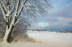 *** Rural snowy landscape (Norway) by ~Ranveig Marie~