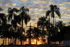 Praça dos Coqueiros - Dores do Indaiá (MG). Foto de Sueli Santos