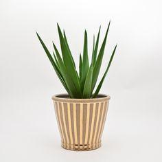 Regent Gold Planter Pot-Stripes | Treillage