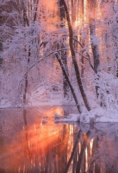 Winter fire and reflection – Rachelle Gobeli – – Photography, Landscape photography, Photography tips Winter Photography, Landscape Photography, Nature Photography, All Nature, Amazing Nature, Flowers Nature, Winter Pictures, Cool Pictures, Winter Poster