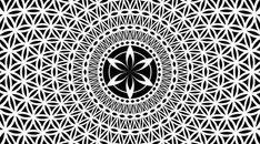 32 Best Ideas Tattoo Geometric Flower Of Life Sacred Geometry Geometric Mandala Tattoo, Sacred Geometry Tattoo, Geometric Flower, Geometric Designs, Geometric Shapes, Flower Mandala, Sacred Geometry Patterns, Geometry Art, Flower Of Life Pattern
