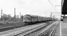 Richard Leonard's Vintage Diesel Miscellany - Central of Georgia EMD 812 Southern Railways, Norfolk Southern, Down South, Old Photos, Savannah Chat, Illinois, Diesel, Georgia, Maine