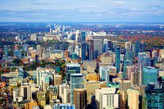 As with any major purchase, there are risks involved with acquiring a new condominium. These risks vary depending on whether you purchased the condo for personal or investment use. Rooftop Lounge, Community Space, New Condo, Luxury Condo, Shopping Center, Condos, Condominium, Great View, Public Transport