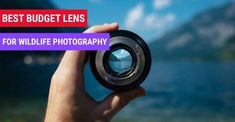 Photography Cheat Sheets, Landscape Photography Tips, Photography Website, Amazing Photography, Free Photography, Improve Photography, Photography Lessons, Photography Camera, Night Photography