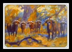 Wild Life, Buffalo, Cape, Painting, Africa, Mantle, Cabo, Painting Art, Wildlife Nature