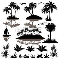 palm tree black and white: Tropical set, sea island with palm trees, plants, flowers, birds gulls and ship, black silhouettes isolated on white background  Vector