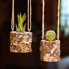 Listado está para un registro de planta titular. Esta maceta está diseñado para suculentas y plantas de aire. Un recipiente de plástico tiene la planta y el agua que protege el registro de daños por agua. Las plantas no incluidas *** Plantador del registro es 3.5 alto y varía entre 3-3.5 de diámetro. De corte verde roble blanco. Estos titulares suculentos madera colgantes únicos son ideales para decoración del hogar y regalos. Viene con vaso de plástico para sostener la planta. Cortar nue...