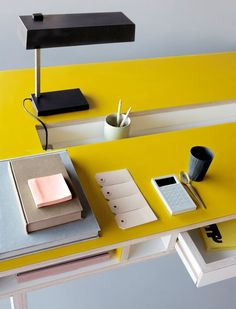 Insekt Desk by Kellie Smits for ARRé Design