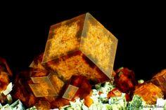 Andradite, Hedenbergite   #Geology #GeologyPage  Locality: Avissalos (Avyssalos; Avessalos; Aghriomelisa Mountain), Serifos Island (Seriphos), Cyclade Islands (Cyclades; Kikladhes; Nomos Kikladhon), Kykládes Prefecture, Aegean Islands Department (Aiyaíon), Greece  Largest Crystal Size: 20 mm  Photo Copyright © Andreas Schmid