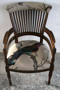 Woodpecker chair available at walnut wallpaper #wallpaper #upholstery Taking inspiration from the ornithological specimens and notes of John Ruskin, Timorous Beasties produced the 'Bird in the Hand' exhibition of furniture, fabrics,cushions and lampshades for the Sheffield Millennium Gallery.