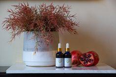Pomegranate Seed Oil, Planter Pots, Vase, Home Decor, Decoration Home, Room Decor, Vases, Home Interior Design, Home Decoration