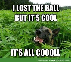 It's all cool