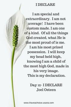 I Declare Day-12 Joel Osteen