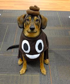 Poop emoji dog costume, funny costume,Best Halloween costumes for kids, DIY kids costumes, easy kids costumes to make, adorable and cute Halloween costumes for toddlers and infants, Halloween party ideas