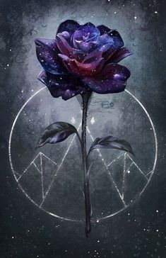 Travel Discover The best flowers for Feyre - Art wallpaper - Galaxy Wallpaper Cute Wallpaper Backgrounds Pretty Wallpapers Aesthetic Iphone Wallpaper Disney Wallpaper Nature Wallpaper Flower Wallpaper Cool Wallpaper Aesthetic Wallpapers Cute Wallpaper Backgrounds, Wallpaper Iphone Cute, Pretty Wallpapers, Wallpaper Pictures, Aesthetic Iphone Wallpaper, Disney Wallpaper, Flower Wallpaper, Aesthetic Wallpapers, Iphone Wallpapers