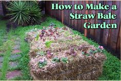 Straw bale gardening is container gardening and raised bed gardening rolled into one, where the straw bales serve as the container as well as the growing medium. You simply stack bales of straw and plant… Hay Bale Gardening, Container Gardening, Organic Gardening, Gardening Tips, Vegetable Gardening, Veg Garden, Cultures Du Monde, Straw Bales, Hay Bales