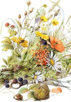 summer bouquet by Marjolein Bastin