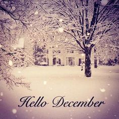 Christmas Scene by Ella Enchanted December Images, December Pictures, December 2014, Ella Enchanted, Snow Covered Trees, Tumblr Backgrounds, Winter Backgrounds, New Month, Snow Scenes