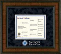 12 Best AKC Frames images in 2014 | Certificate frames, Dog