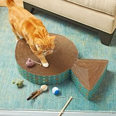 Goldfish Shaped Cat Scratching Pad Made From Recycled Materials