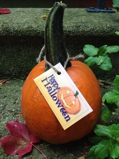 Clever fall promotion: a realtor from First Weber left this little pumpkin on our doorstep, together with a laminated card that gave his contact information and a QR code.