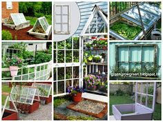 From green to green: Recycle for your garden