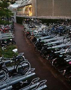 Estacionamiento bicis. Holanda.